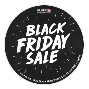 Black Friday Sale! Tik-Tok! Don't Delay!