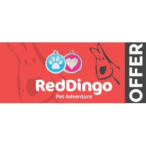 November Offer: Red Dingo ID Tags!