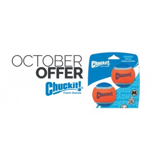 October Offer: Chuckit! Fetch Games!