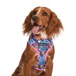 Graffiti Pink Pattern Harness by Urban Pup