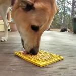 Honeycomb Design - Enrichment Licking Mat